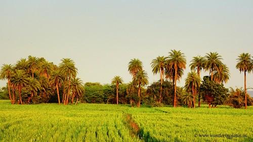 Bundi countryside | by wanderingjatin