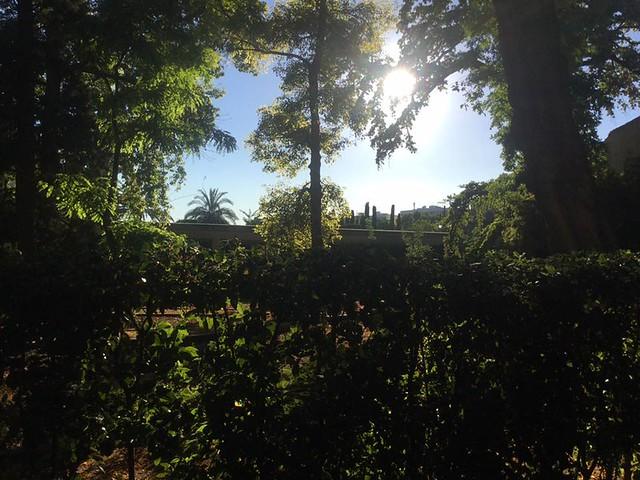 jardi botanic 1