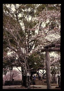 竹田の岡城祉内の神社