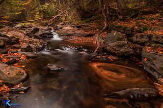 Stream and Leaves 1 | by Tim_NEK