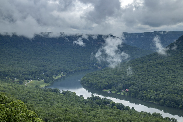 Snoopers Rock overlook detail, Tennessee River, Prentice Cooper SF, Marion County, Tennessee 1