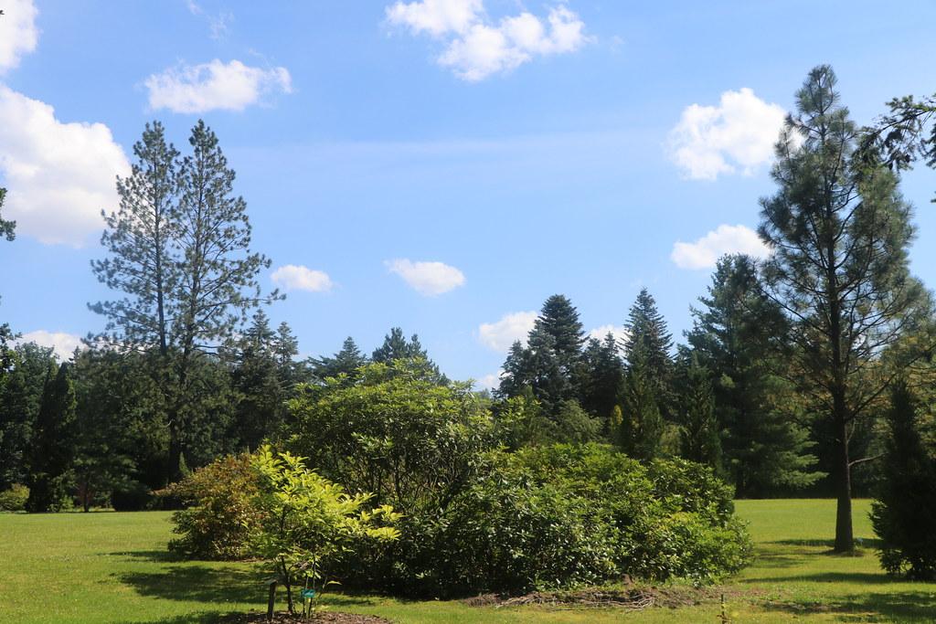 Wirty, Pomorze, Poland - Arboretum