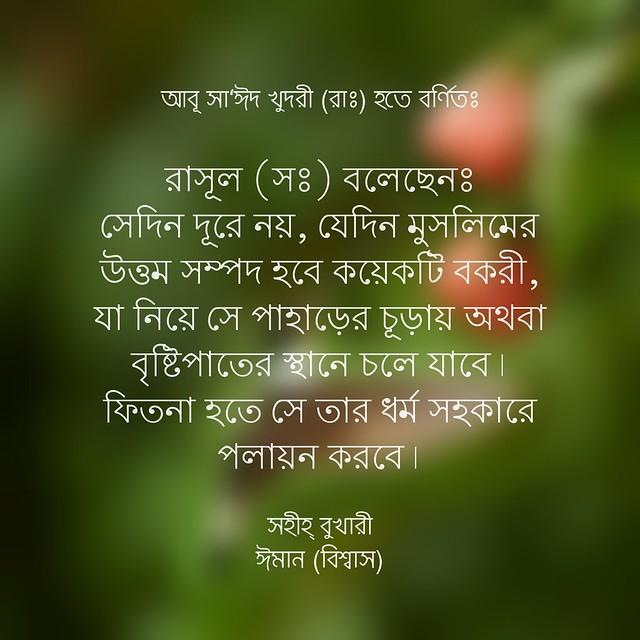 সহিহ্ বুখারী