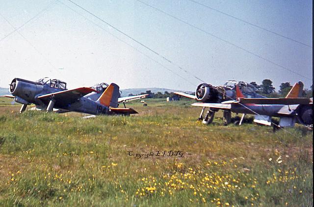 Percival P.56 Provost T.53 184 Irish Air Corps