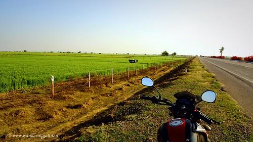 Road to Bundi | by wanderingjatin