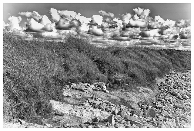 sea shore [FUJI0719_P2]