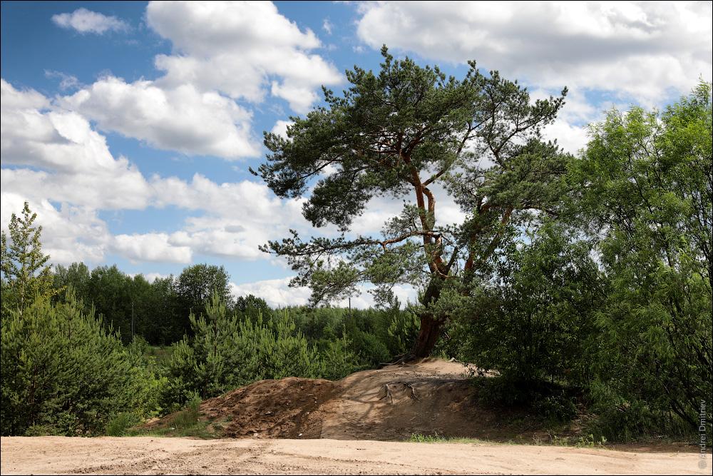 Колодищи, Беларусь