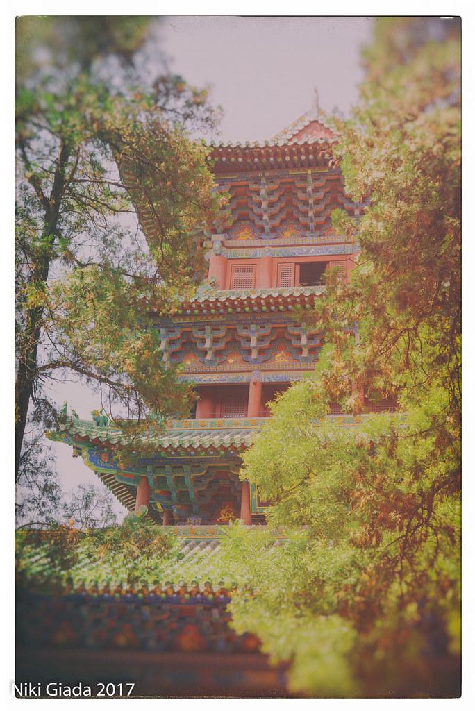 Shaolin Temple - Postcard view