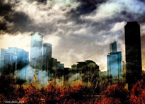 landscape chicago fog skyscrapers buildings skyline city trees fall clouds nikon