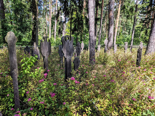 Pagan burial markers called krikštai in Nida's old graveyard | by Second-Half Travels