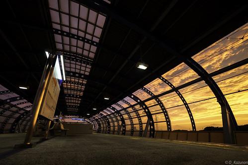 olympus omd em5mkii em5ii mzuiko 714mm ゆめが丘駅 夕日 landscape sunset magichour japon japan