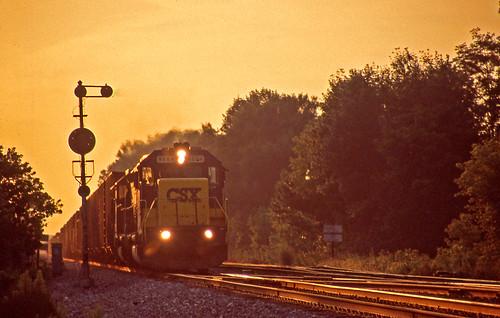 sunset silhouette tracks sunsets railroadtracks csx sunsetphotography silhouettephotography csxtrains sterlingohio goldenhourphotography coketrains csxnewcastlesubdivision csxinsterlingohio