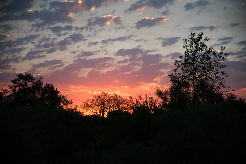 sunrise corrales newmexico