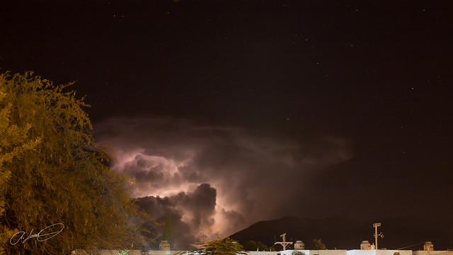 Noches de Zeus