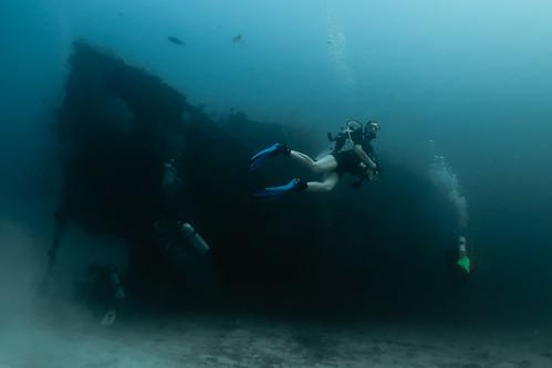Gess at Fesdu wreck (North Ari atoll).