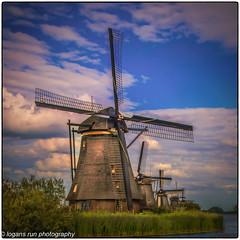Golden Hour settles on windmills