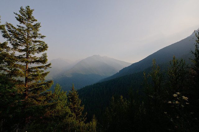 The hills of the Olympic Peninsula