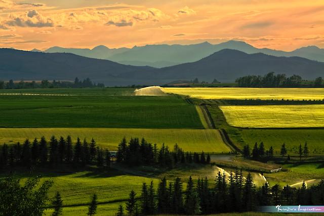 The Art of Landscape *A Beautiful Nature* (EXPLORE)