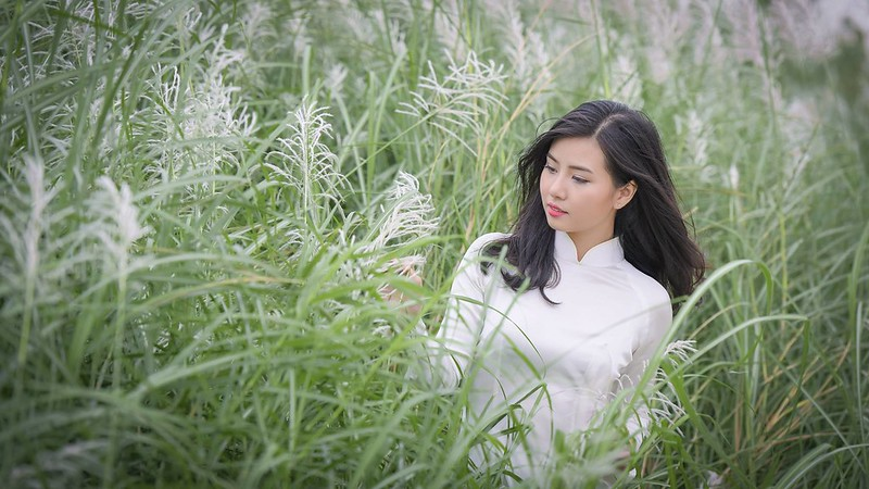 co lau duoi ga - Linh Van Dinh (12)