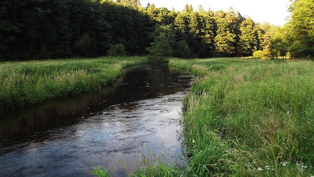 Merkys River (09)