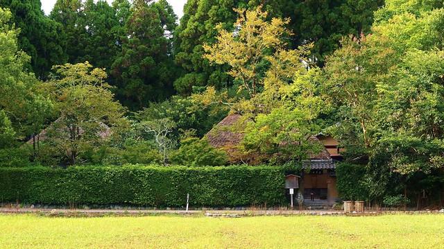 Old Poet's House  /  Kyoto Sagano Rakushisha 京都 嵯峨野 落柿舎