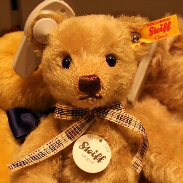 Teddybeer / Berlijn