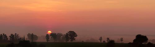 sunrise fog dawn landscape wilmottownship waterlooregion ontario canada