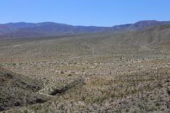 California - Anza-Borrego Desert State Park