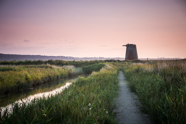 Westwood Marshes Mill