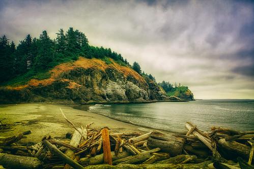 capedisappointmentstatepark capedisappointmentlighthouse lighthouse waikikibeach foggy beach logs