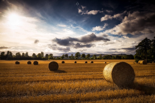sunshine countryside summer perthshire landscape leefilters scotland fields bales strawbales canon harvest sunset clouds forgandenny unitedkingdom gb