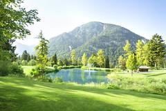 14086-0714_Achensee-Golf_A12_027