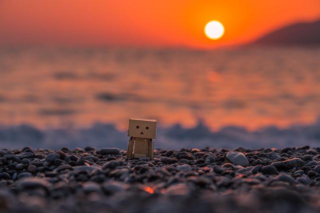 Danbo at sunset