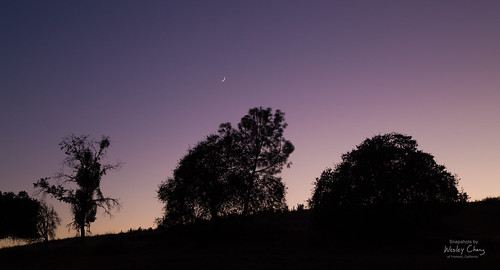 A nascent crescent moon at dusk.