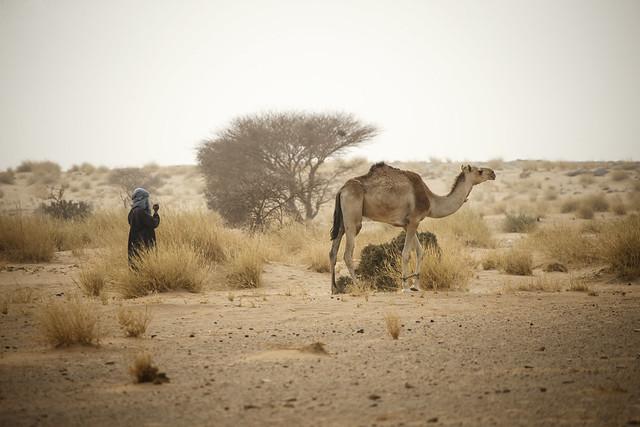 Patrouillenfahrt im Niger