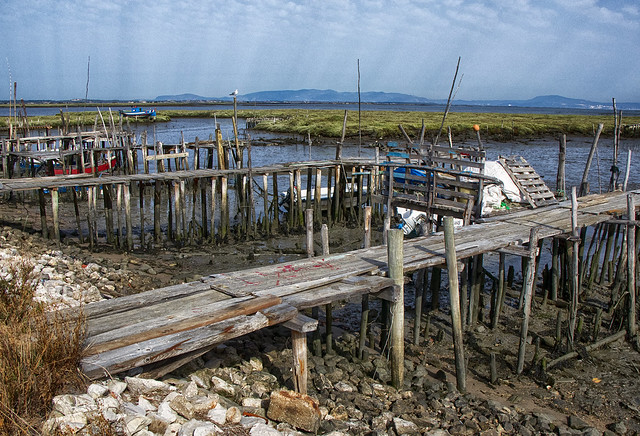 Stilt Port of Carrasqueira - Porto Palafita da Carrasqueira
