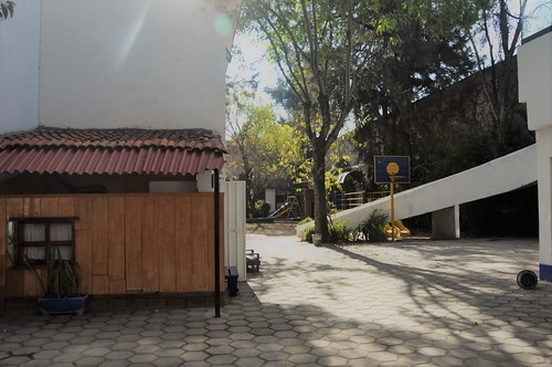 Jardín de atrás, patio afuera de la casita