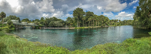 ocala shotoniphone silversprings iphone7 travel tourist attraction statepark florida outdoors nature panorama