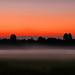 Foggy Sunset by Joe Rito