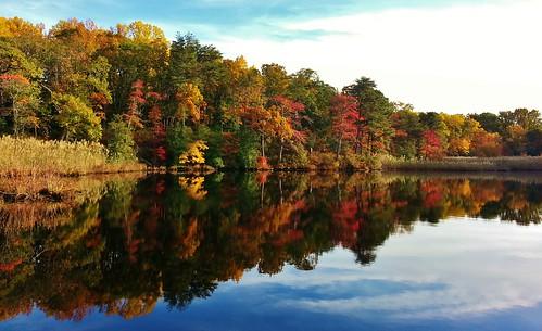 yatespond weinbergpark weinbergpond annearundelcounty pasadena pasadenamaryland autumnfoliage autumnscenes autumncolors autumn maryland