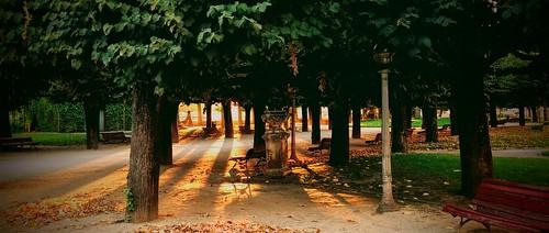 park parque sunset