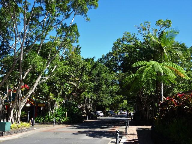 Kuranda in the Atherton Tabelands behind Cairns. The lush tropical main street.