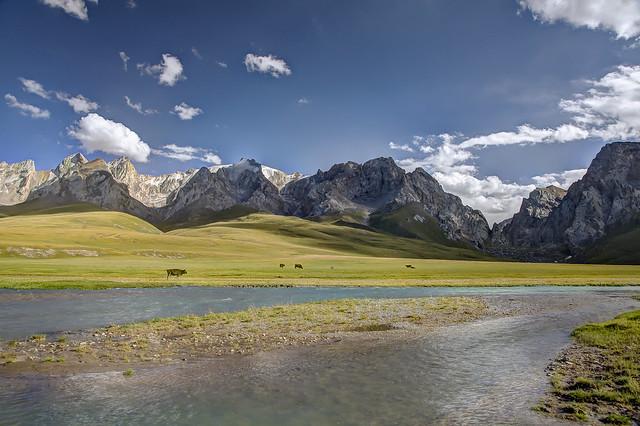 Summer pasture along the Kurumduk River