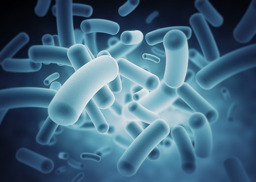 IBM and MIT Help Scientists Study Connection Between Bacteria and Autoimmune Diseases | by IBM Research