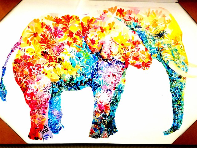 My Favorite Elephant In The Room ☺☺