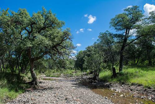 Landscape in the Northern Huachuca Mountains | by Jeremy Wright Photography