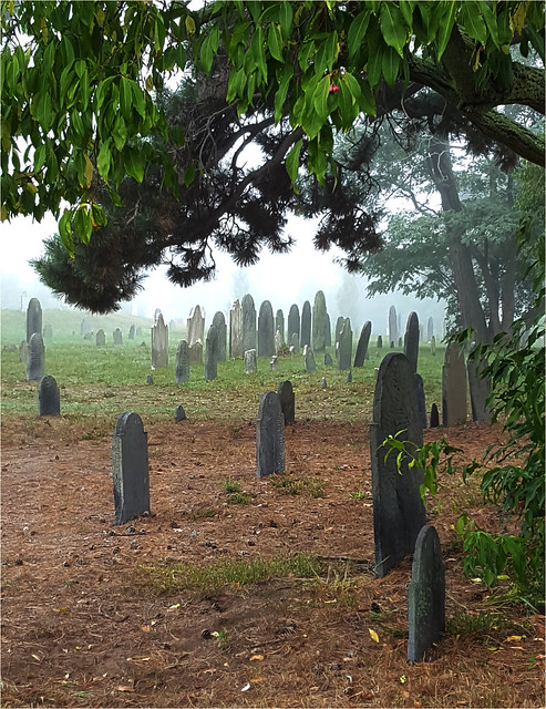 Foggy Morning at Howard Street Cemetery
