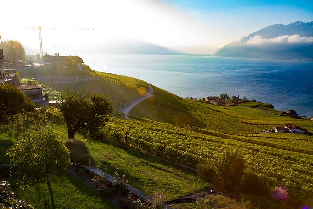 Lavaux by Geneva Lake