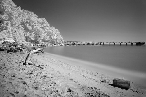 beach bw infrared landscape maryland pasadena unitedstates us canon 6d chesapeake bay blackwhite