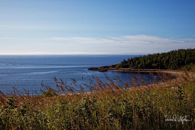 Shoreline Near Magpie, Quebec